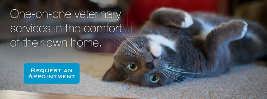 One-on-one, in-home veterinary services. Contact us for an appointment.