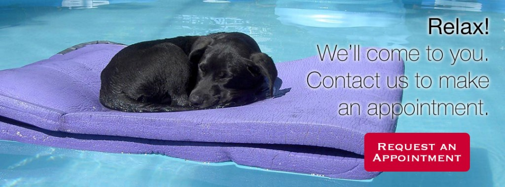 In-home veterinary services. Contact us to make an appointment.